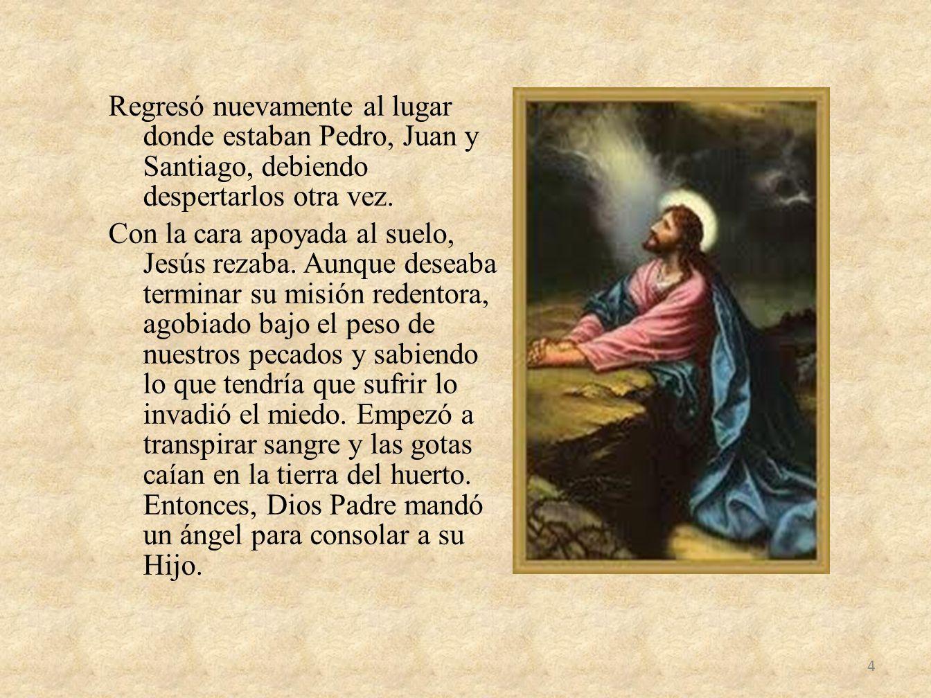 Regresó nuevamente al lugar donde estaban Pedro, Juan y Santiago, debiendo despertarlos otra vez. Con la cara apoyada al suelo, Jesús rezaba. Aunque d