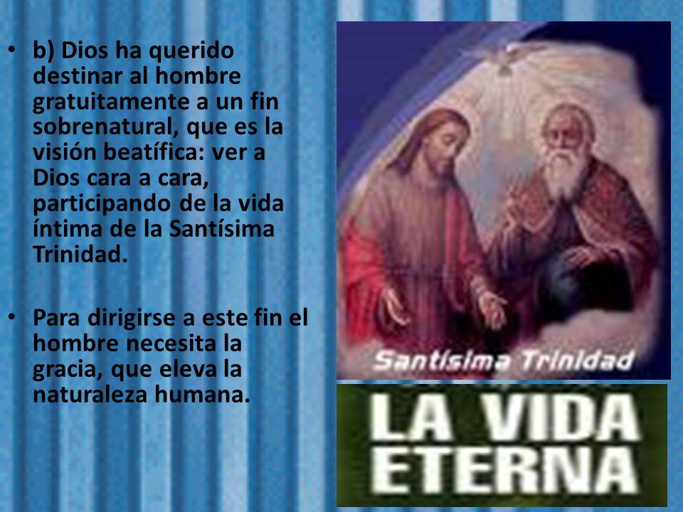 b) Dios ha querido destinar al hombre gratuitamente a un fin sobrenatural, que es la visión beatífica: ver a Dios cara a cara, participando de la vida