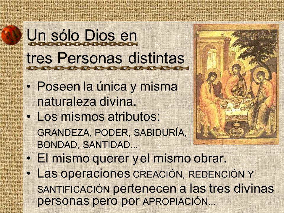 Un sólo Dios en tres Personas distintas Poseen la única y misma naturaleza divina. Los mismos atributos: GRANDEZA, PODER, SABIDURÍA, BONDAD, SANTIDAD.