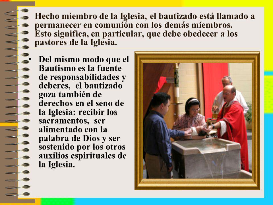 Hecho miembro de la Iglesia, el bautizado está llamado a permanecer en comunión con los demás miembros. Esto significa, en particular, que debe obedec