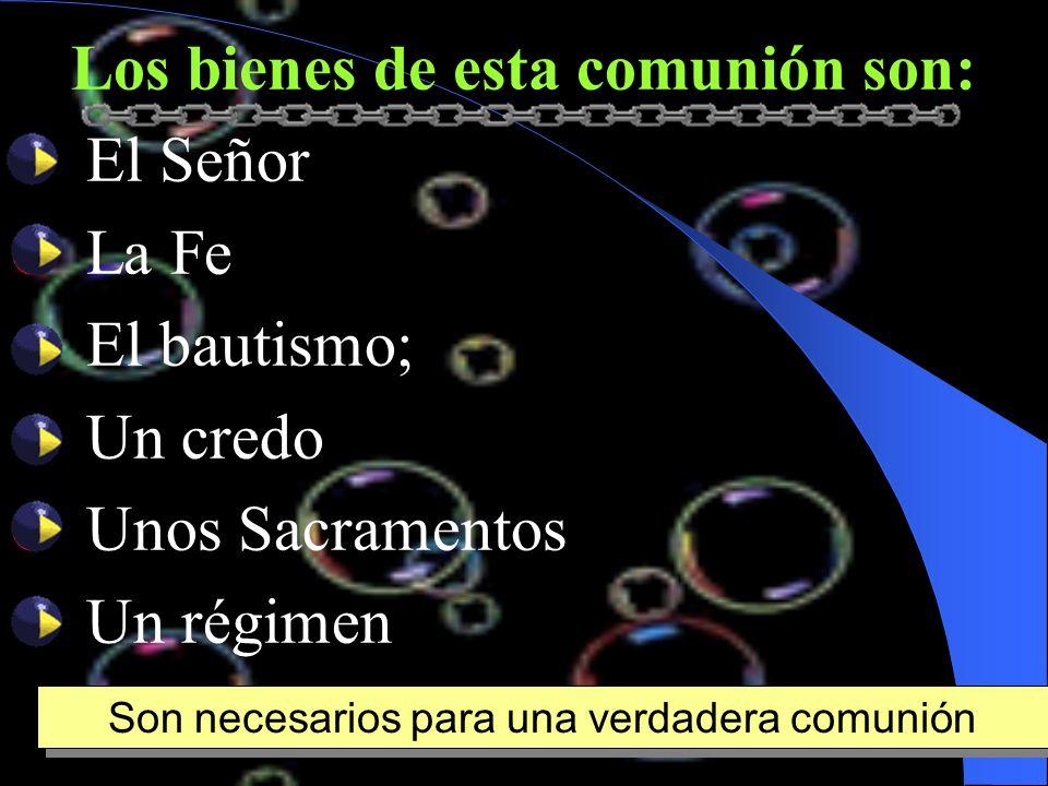 Los bienes de esta comunión son: El Señor La Fe El bautismo; Un credo Unos Sacramentos Un régimen Son necesarios para una verdadera comunión