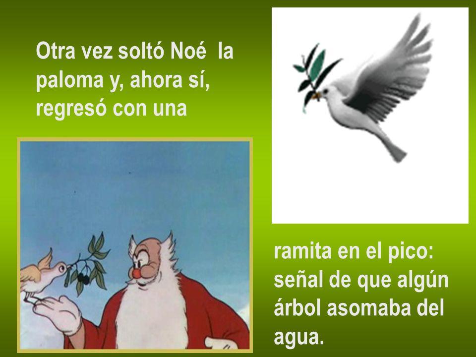 Otra vez soltó Noé la paloma y, ahora sí, regresó con una ramita en el pico: señal de que algún árbol asomaba del agua.
