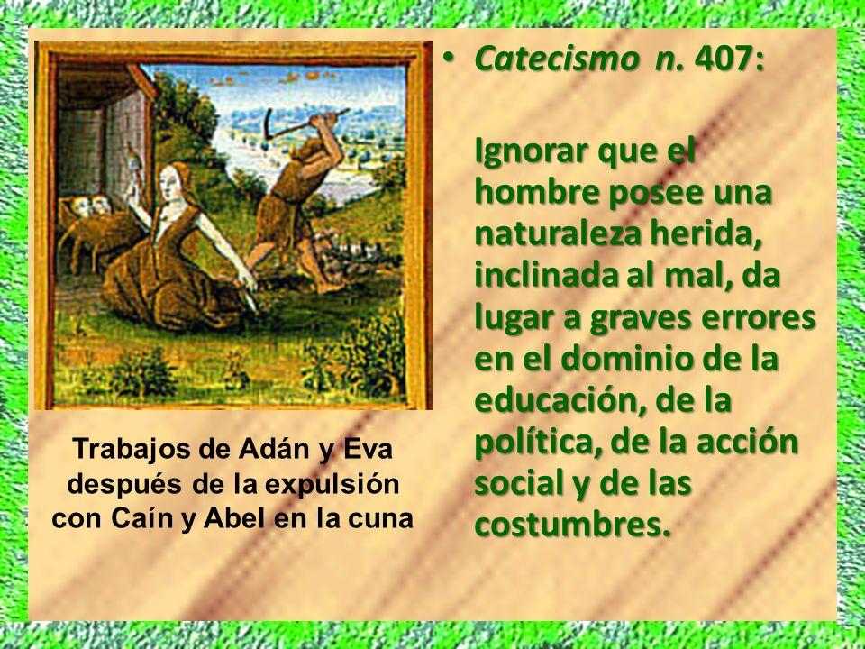 Catecismo n. 407: Catecismo n. 407: Ignorar que el hombre posee una naturaleza herida, inclinada al mal, da lugar a graves errores en el dominio de la