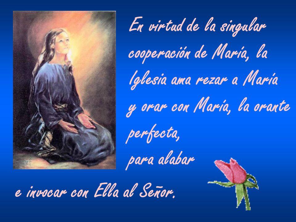 María, en efecto, nos muestra el camino que es su Hijo, el único Mediador.