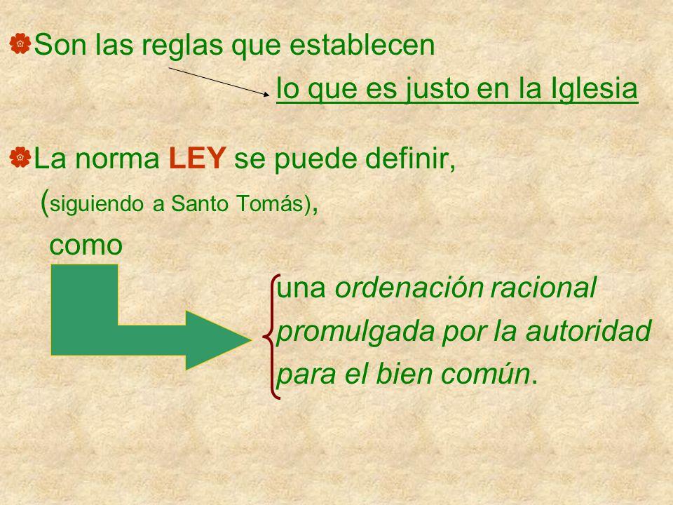 Son las reglas que establecen lo que es justo en la Iglesia La norma LEY se puede definir, ( siguiendo a Santo Tomás), como una ordenación racional pr