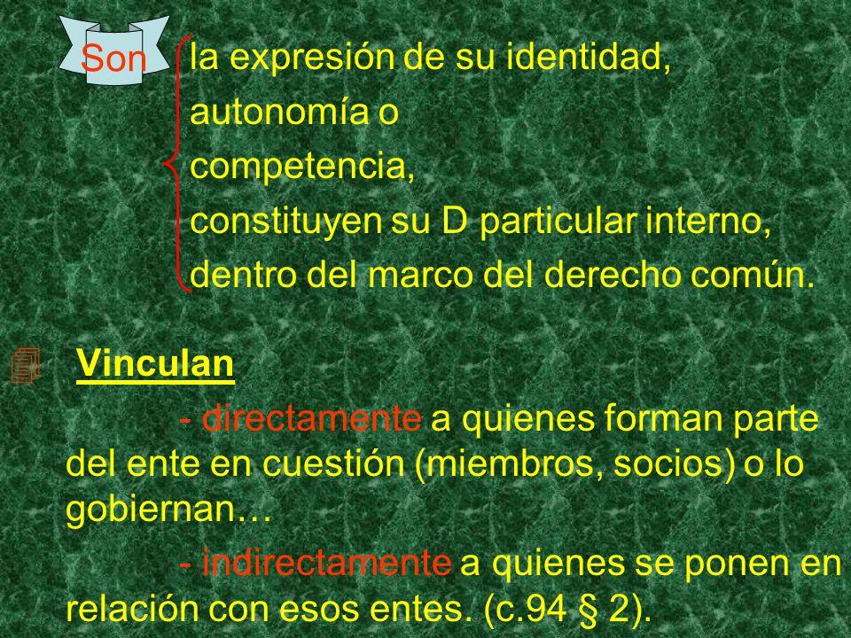 la expresión de su identidad, autonomía o competencia, constituyen su D particular interno, dentro del marco del derecho común. Vinculan - directament