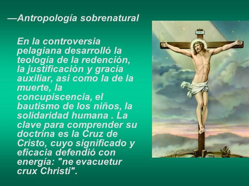 Antropología sobrenatural En la controversia pelagiana desarrolló la teología de la redención, la justificación y gracia auxiliar, asi como la de la m
