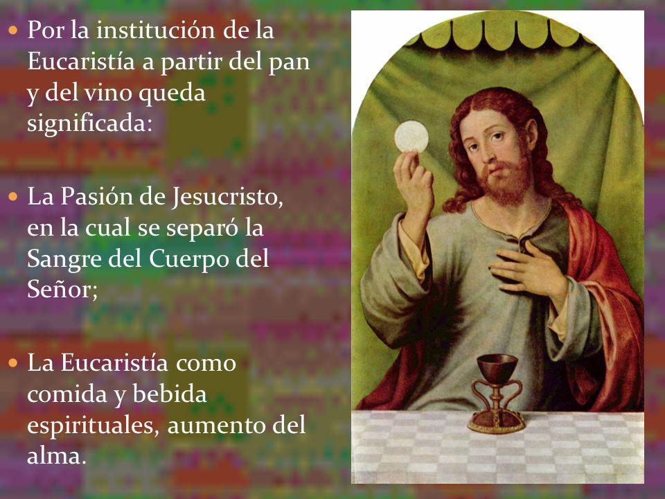 Por la institución de la Eucaristía a partir del pan y del vino queda significada: La Pasión de Jesucristo, en la cual se separó la Sangre del Cuerpo