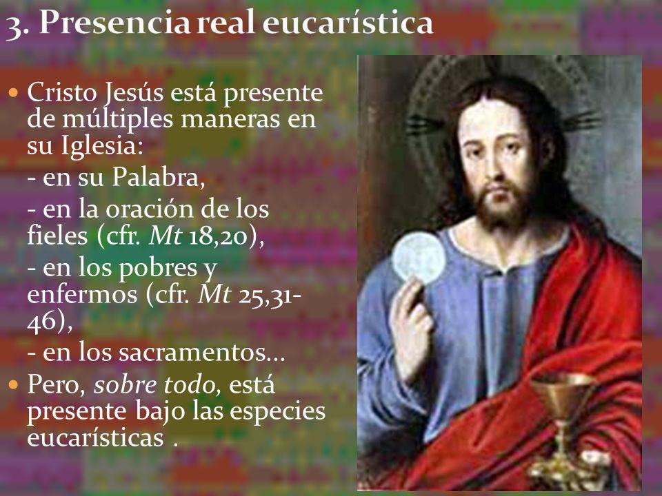 En la Eucaristía están contenidos verdadera, real y substancialmente el Cuerpo y la Sangre junto con el Alma y la Divinidad de nuestro Señor Jesucristo: perfecto Dios y perfecto Hombre, el mismo que nació de la Virgen, murió en la Cruz y está sentado en los Cielos a la diestra del Padre.