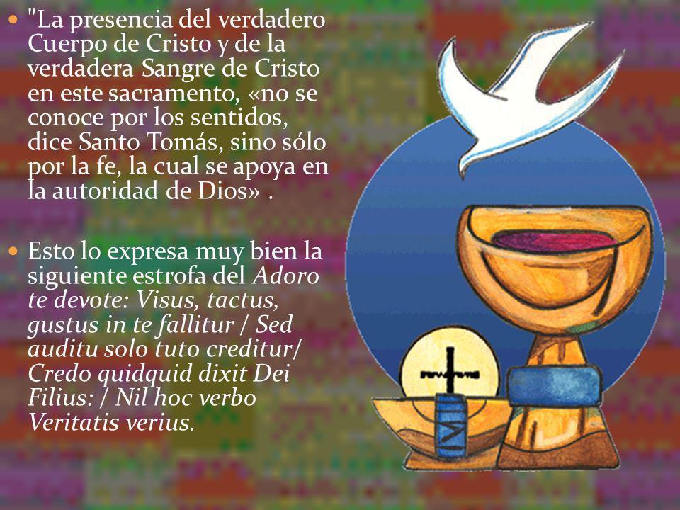 Después de la consagración, Cristo está todo entero presente en cada una de las especies y todo entero en cada una de sus partes.