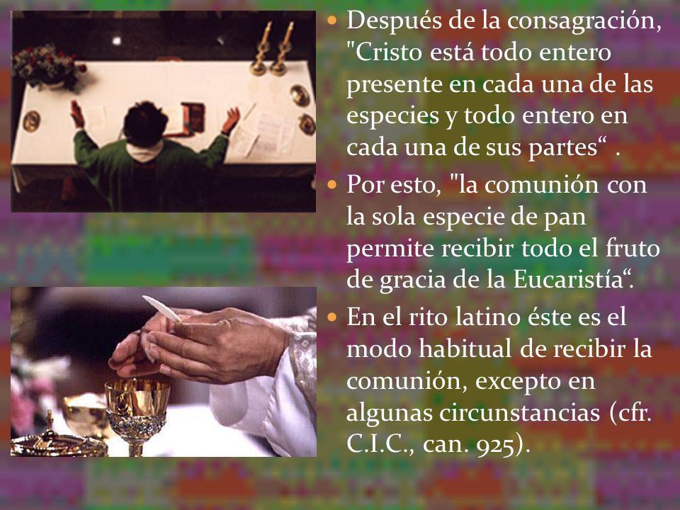Nuestro Señor Jesucristo, al instituir la Eucaristía, ordenó a los Apóstoles: Haced esto en conmemoración mía (Lc 22,19).