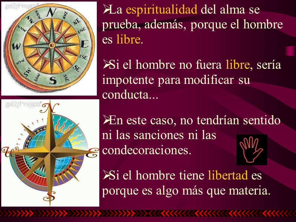 La espiritualidad del alma se prueba, además, porque el hombre es libre.