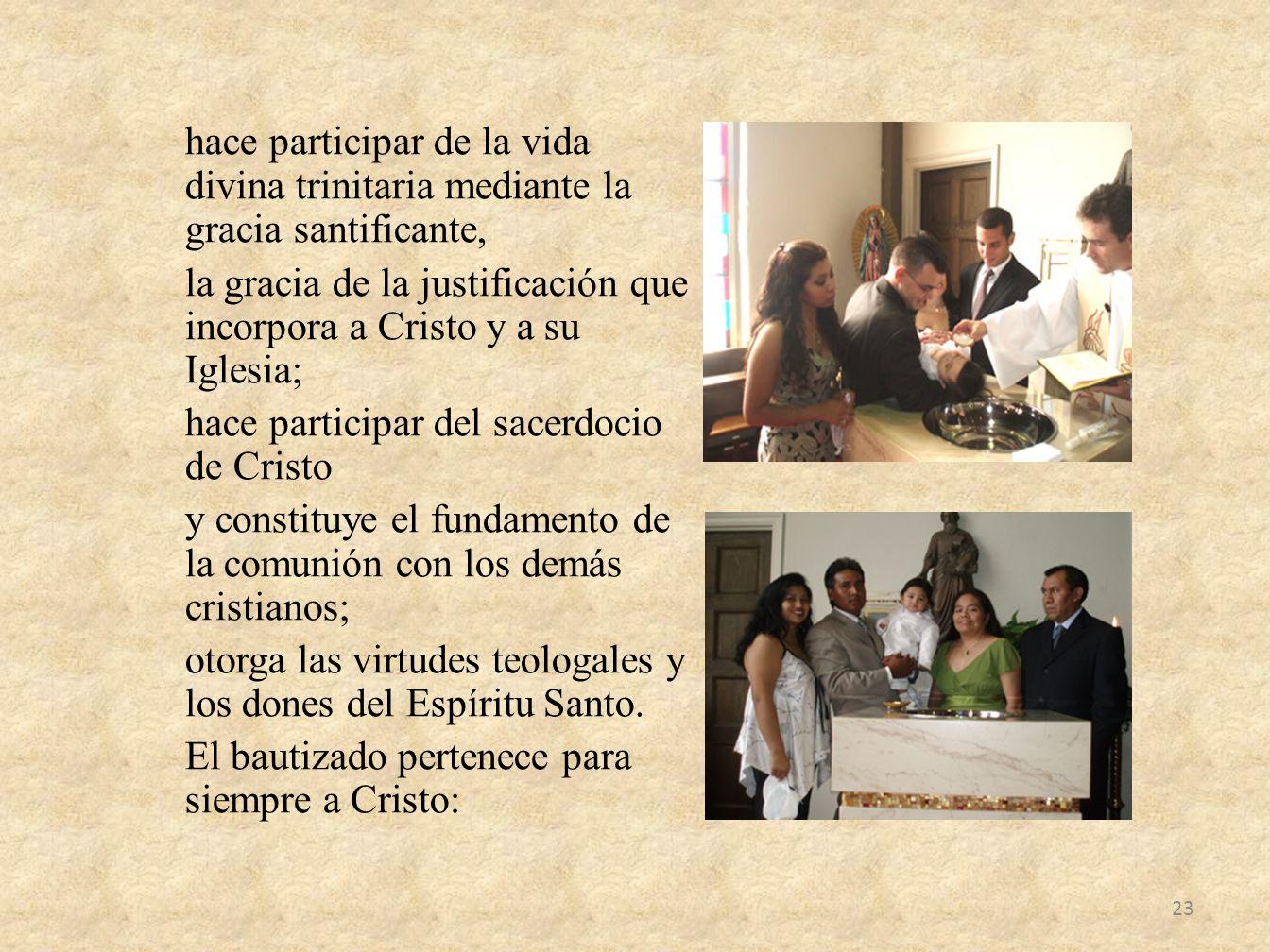 hace participar de la vida divina trinitaria mediante la gracia santificante, la gracia de la justificación que incorpora a Cristo y a su Iglesia; hac