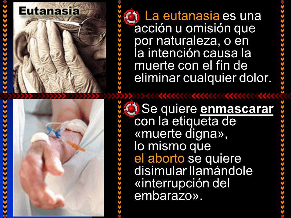 La eutanasia es una acción u omisión que por naturaleza, o en la intención causa la muerte con el fin de eliminar cualquier dolor. Se quiere enmascara