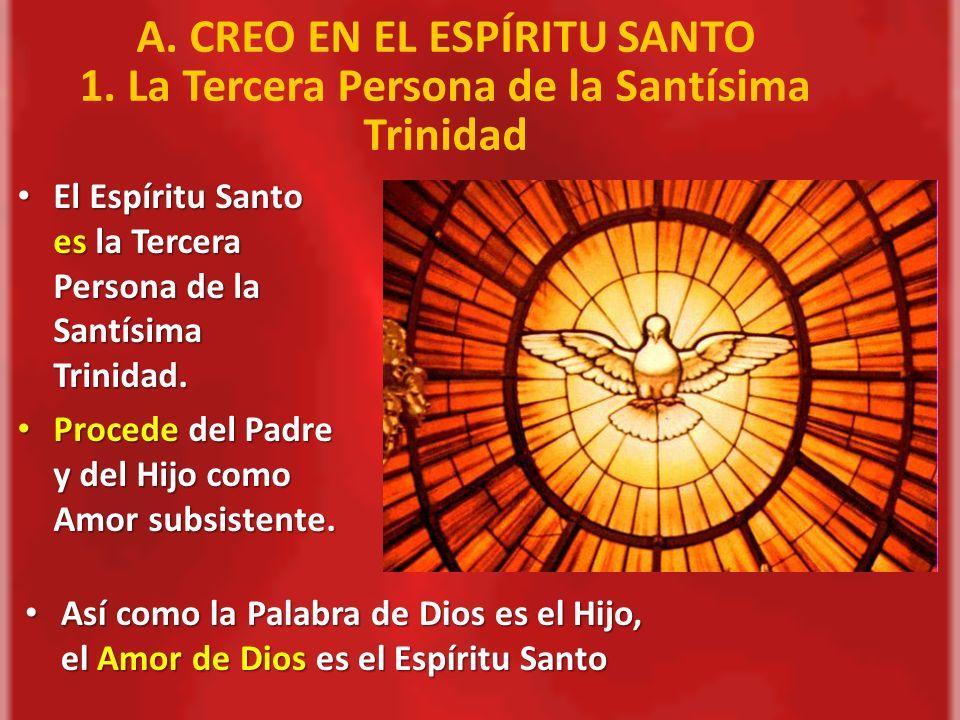 b)Santa porque santa es su Cabeza; porque Cristo la unido a Sí, como Cuerpo suyo, y la ha llenado del don del Espíritu Santo ; por la santidad de sus miembros que ya están en el Cielo, y, de modo eminente por la S.