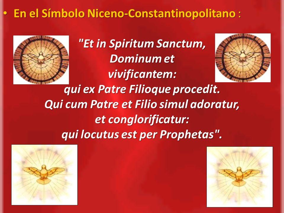 - Dominum (Señor), porque el Espíritu Santo es Dios, y porque gobierna y dirige nuestras vidas para llevarnos a la santidad; - Vivificantem (Vivificador), porque así como el alma da la vida al cuerpo, así la gracia don del Espíritu Santo da la vida al alma;