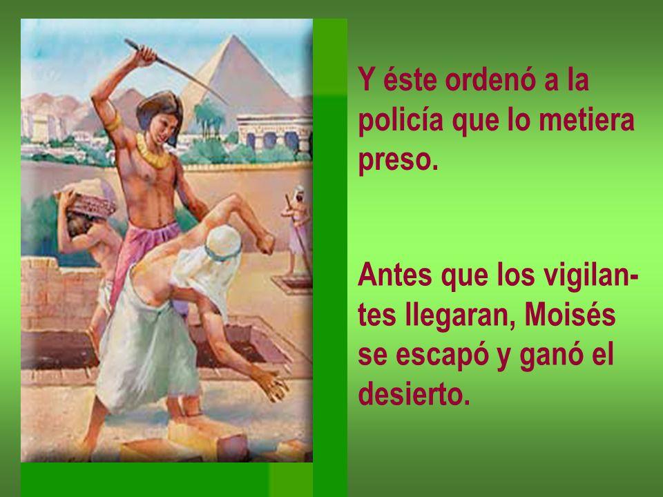Y éste ordenó a la policía que lo metiera preso. Antes que los vigilan- tes llegaran, Moisés se escapó y ganó el desierto.
