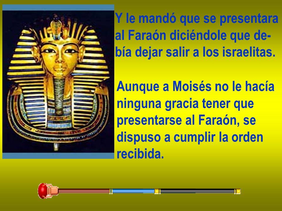 Y le mandó que se presentara al Faraón diciéndole que de- bía dejar salir a los israelitas. Aunque a Moisés no le hacía ninguna gracia tener que prese