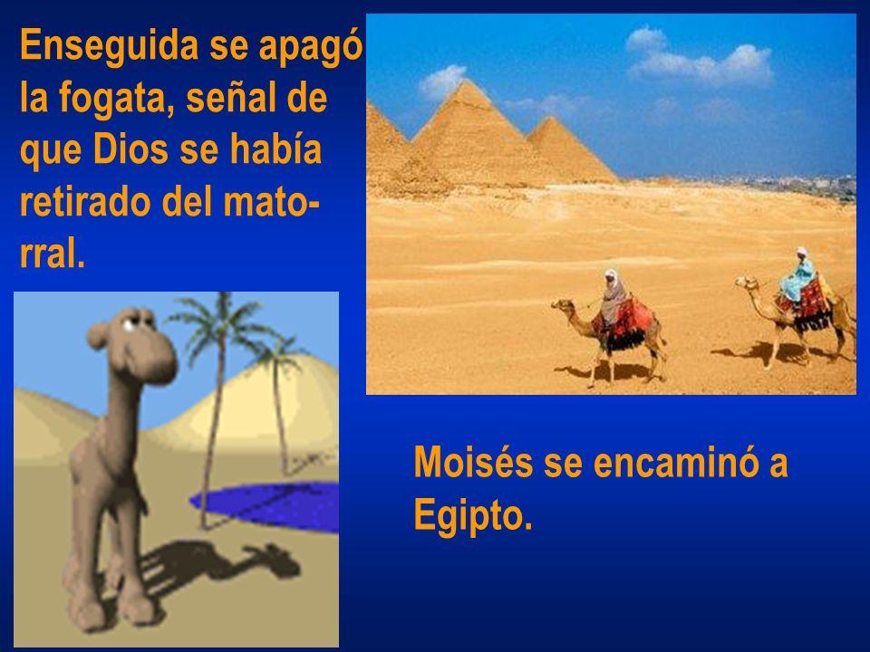 Enseguida se apagó la fogata, señal de que Dios se había retirado del mato- rral. Moisés se encaminó a Egipto.