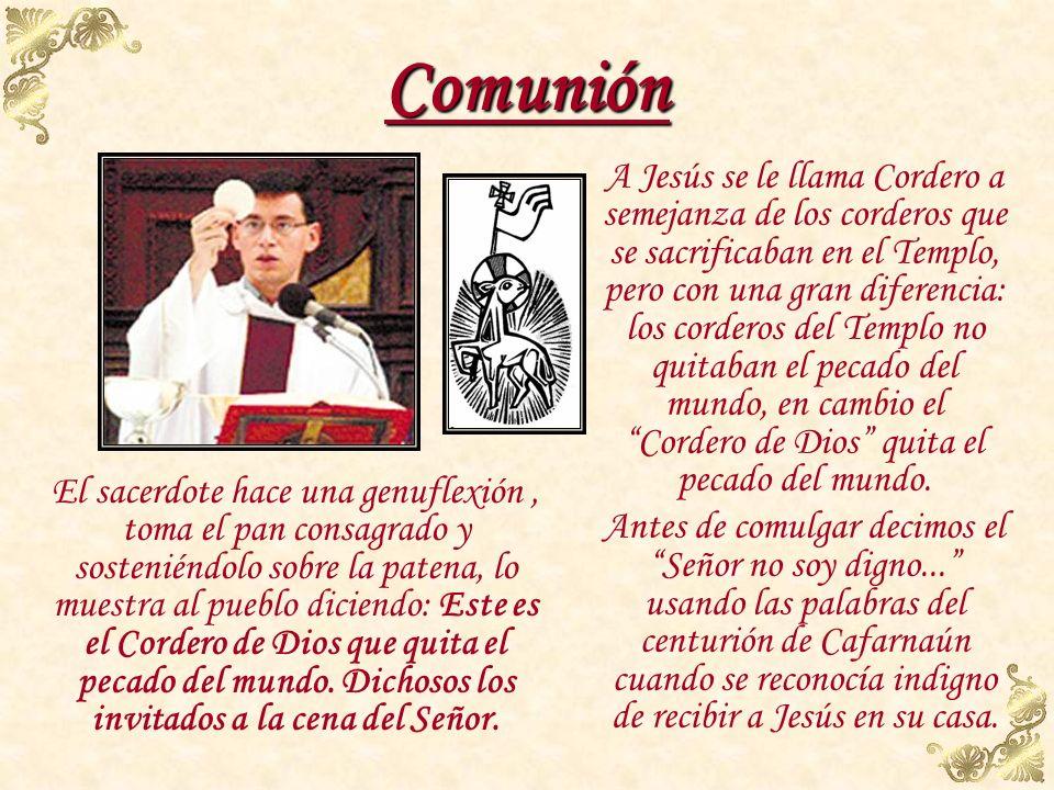 Fracción del pan El sacerdote toma el pan consagrado, lo parte sobre la patena y deja caer una parte del mismo en el cáliz, diciendo en secreto: El Cu