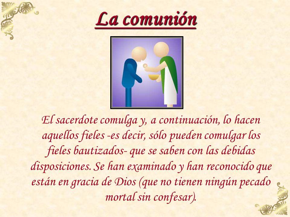 Comunión El sacerdote hace una genuflexión, toma el pan consagrado y sosteniéndolo sobre la patena, lo muestra al pueblo diciendo: Este es el Cordero
