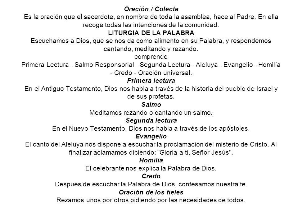 Celebración de la Eucaristía y sus partes Para saber aprovechar los grandes frutos espirituales que se nos dan a través de la Celebración Eucarística,