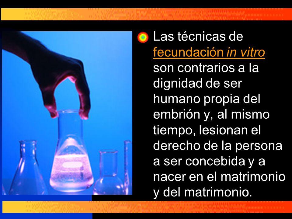 Las técnicas de fecundación in vitro son contrarios a la dignidad de ser humano propia del embrión y, al mismo tiempo, lesionan el derecho de la perso
