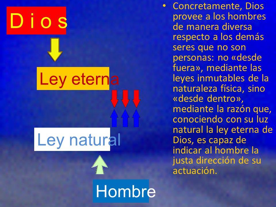 Al crear al hombre, Dios le impuso el mandamiento de no comer del árbol de la ciencia del bien y del mal.