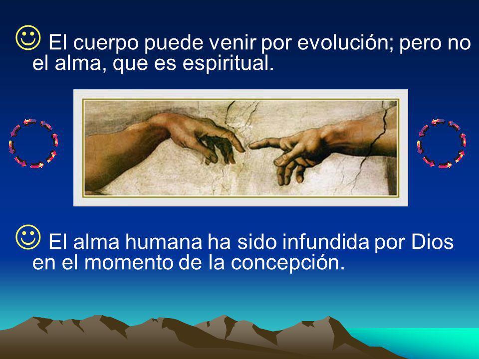 El cuerpo puede venir por evolución; pero no el alma, que es espiritual. El alma humana ha sido infundida por Dios en el momento de la concepción.