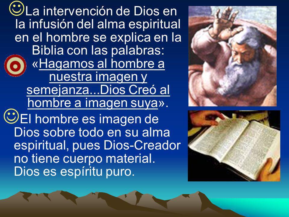 La intervención de Dios en la infusión del alma espiritual en el hombre se explica en la Biblia con las palabras: «Hagamos al hombre a nuestra imagen