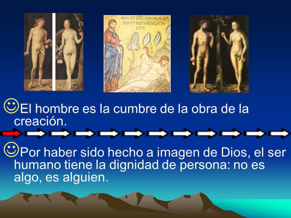 El hombre es la cumbre de la obra de la creación. Por haber sido hecho a imagen de Dios, el ser humano tiene la dignidad de persona: no es algo, es al