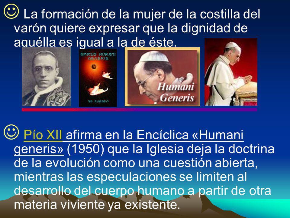 La formación de la mujer de la costilla del varón quiere expresar que la dignidad de aquélla es igual a la de éste. Pío XII afirma en la Encíclica «Hu