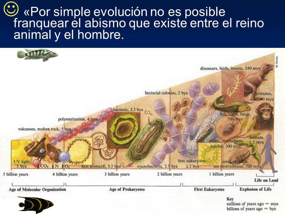 «Por simple evolución no es posible franquear el abismo que existe entre el reino animal y el hombre.