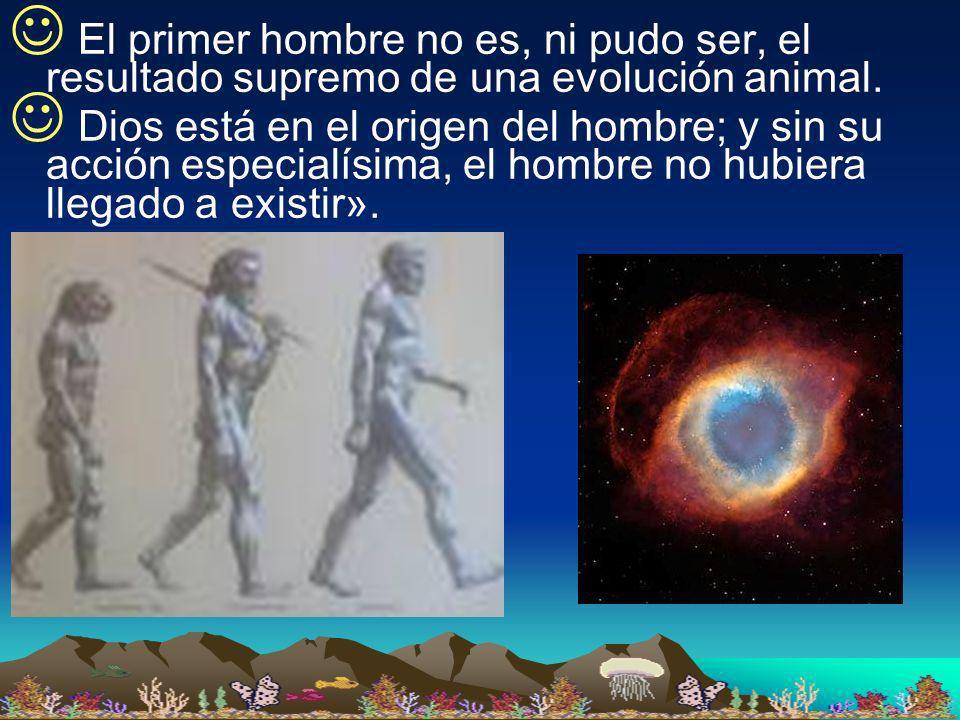 El primer hombre no es, ni pudo ser, el resultado supremo de una evolución animal. Dios está en el origen del hombre; y sin su acción especialísima, e
