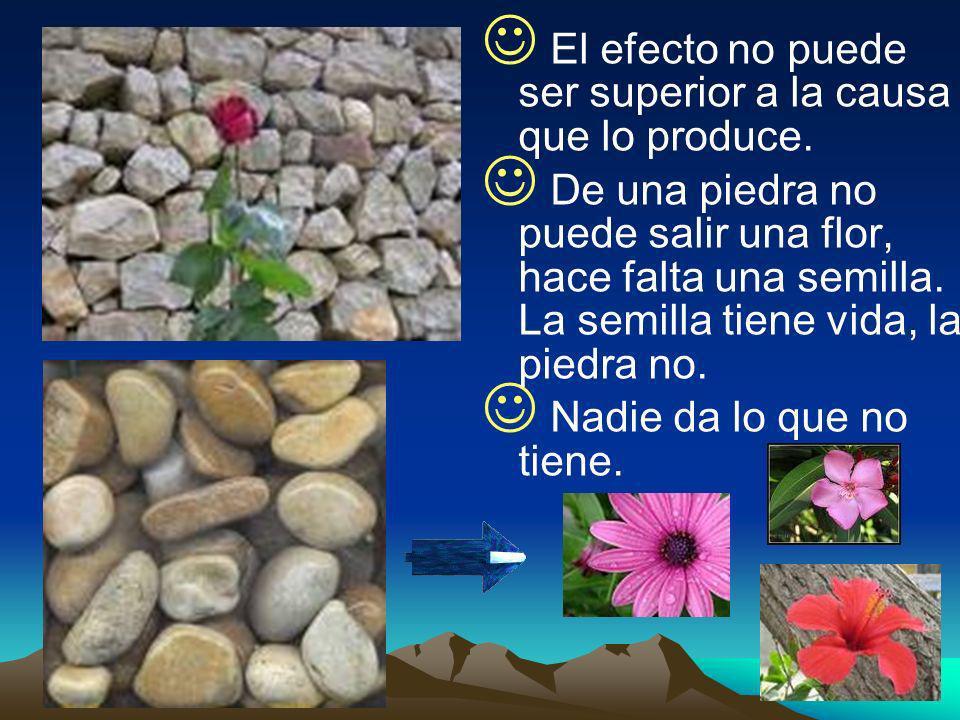 El efecto no puede ser superior a la causa que lo produce. De una piedra no puede salir una flor, hace falta una semilla. La semilla tiene vida, la pi