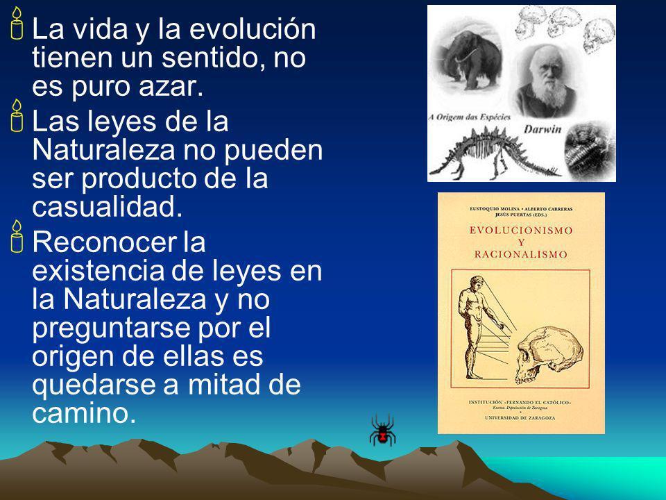 La vida y la evolución tienen un sentido, no es puro azar. Las leyes de la Naturaleza no pueden ser producto de la casualidad. Reconocer la existencia