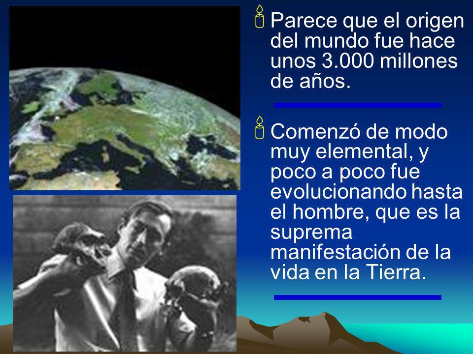 Parece que el origen del mundo fue hace unos 3.000 millones de años. Comenzó de modo muy elemental, y poco a poco fue evolucionando hasta el hombre, q