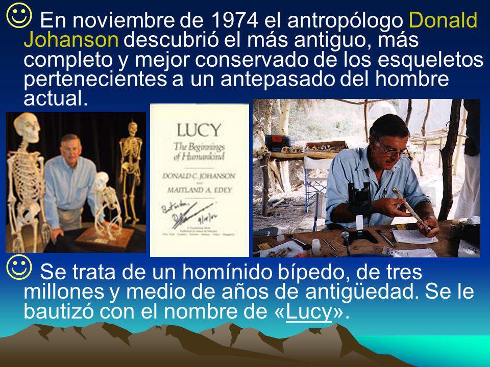 En noviembre de 1974 el antropólogo Donald Johanson descubrió el más antiguo, más completo y mejor conservado de los esqueletos pertenecientes a un an