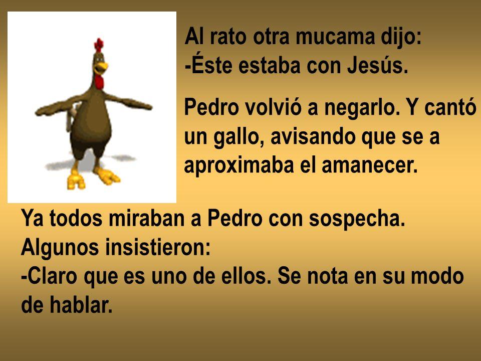 Al rato otra mucama dijo: -Éste estaba con Jesús. Pedro volvió a negarlo. Y cantó un gallo, avisando que se a aproximaba el amanecer. Ya todos miraban