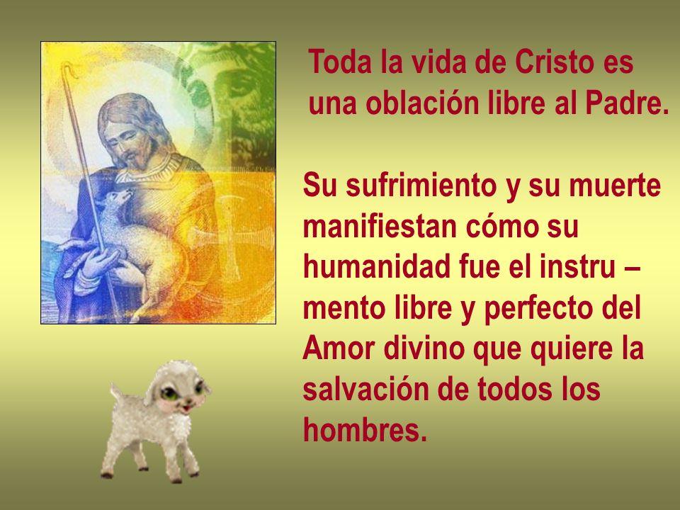 Toda la vida de Cristo es una oblación libre al Padre. Su sufrimiento y su muerte manifiestan cómo su humanidad fue el instru – mento libre y perfecto