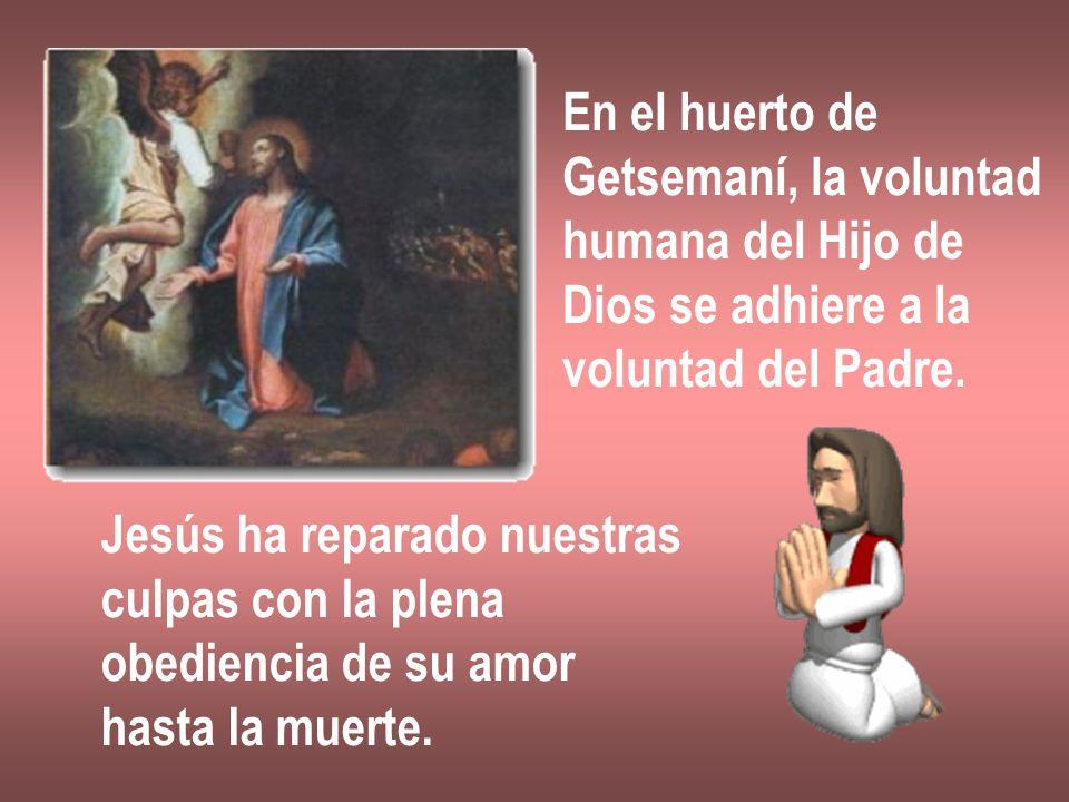 En el huerto de Getsemaní, la voluntad humana del Hijo de Dios se adhiere a la voluntad del Padre. Jesús ha reparado nuestras culpas con la plena obed