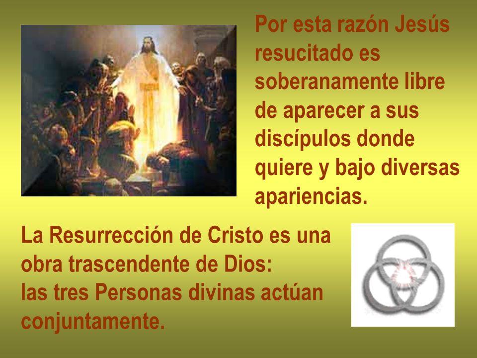 Por esta razón Jesús resucitado es soberanamente libre de aparecer a sus discípulos donde quiere y bajo diversas apariencias. La Resurrección de Crist