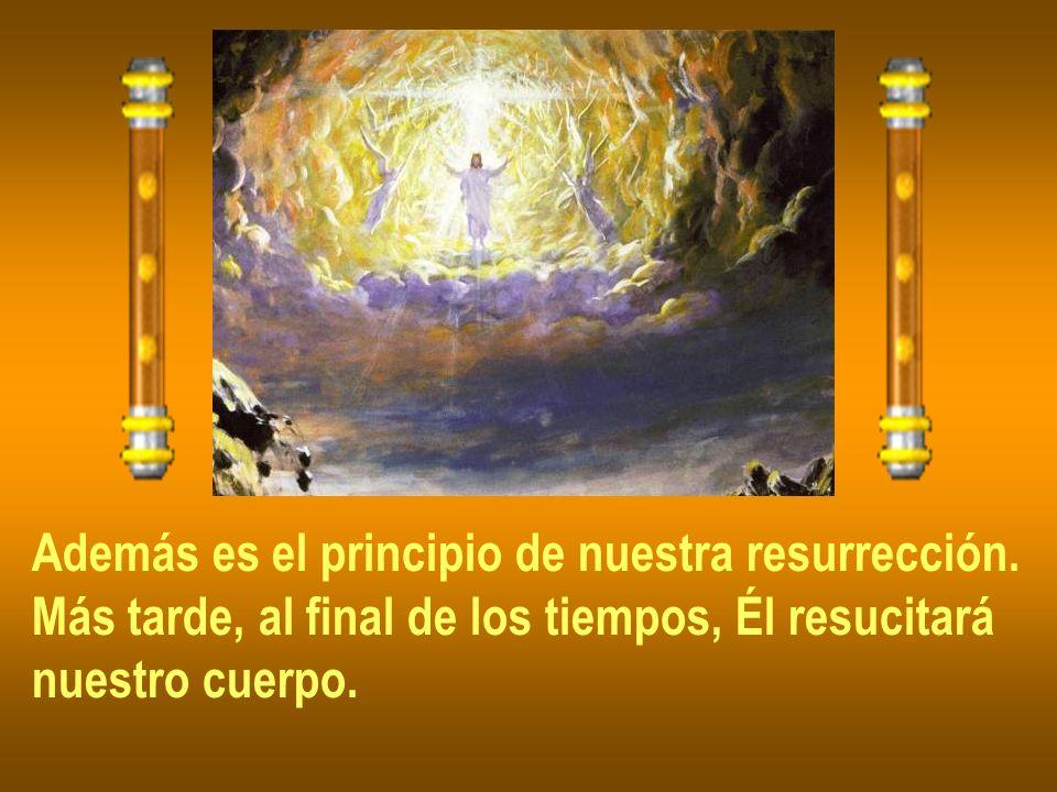 Además es el principio de nuestra resurrección. Más tarde, al final de los tiempos, Él resucitará nuestro cuerpo.
