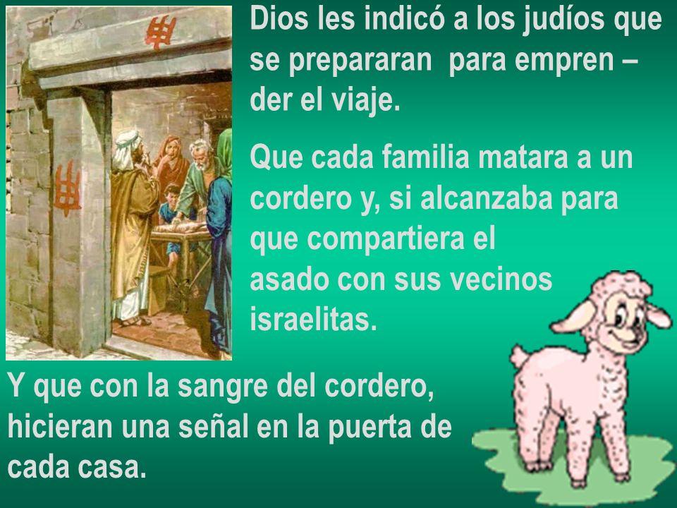 Dios les indicó a los judíos que se prepararan para empren – der el viaje. Que cada familia matara a un cordero y, si alcanzaba para que compartiera e