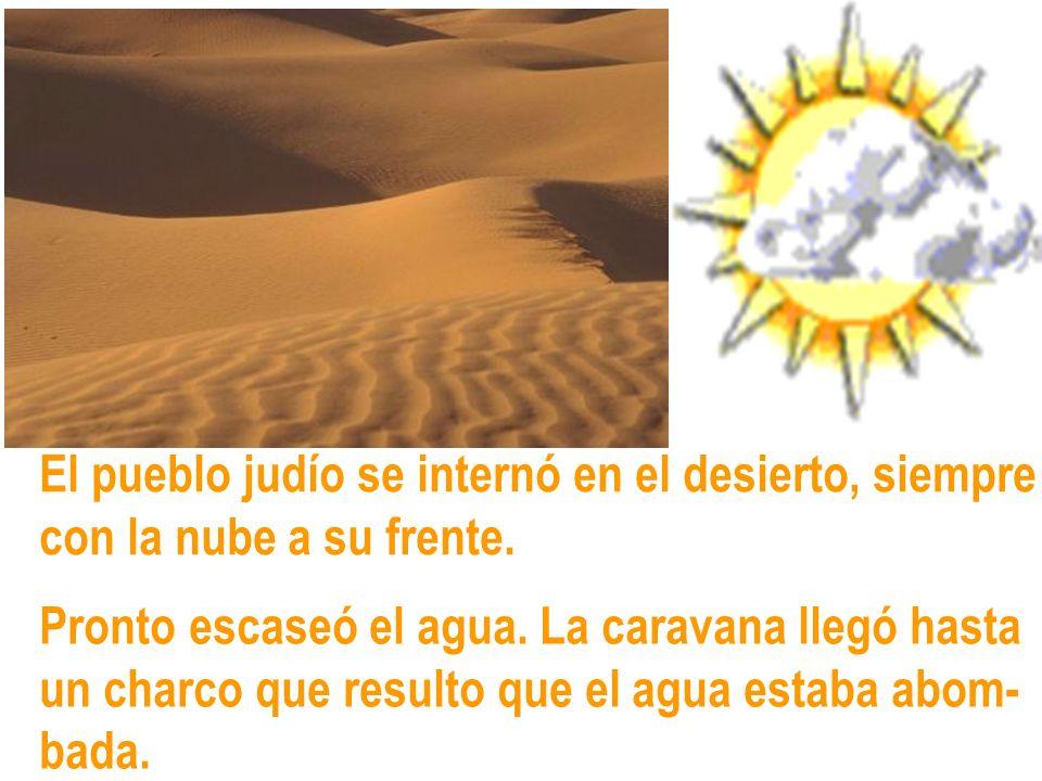 El pueblo judío se internó en el desierto, siempre con la nube a su frente. Pronto escaseó el agua. La caravana llegó hasta un charco que resulto que