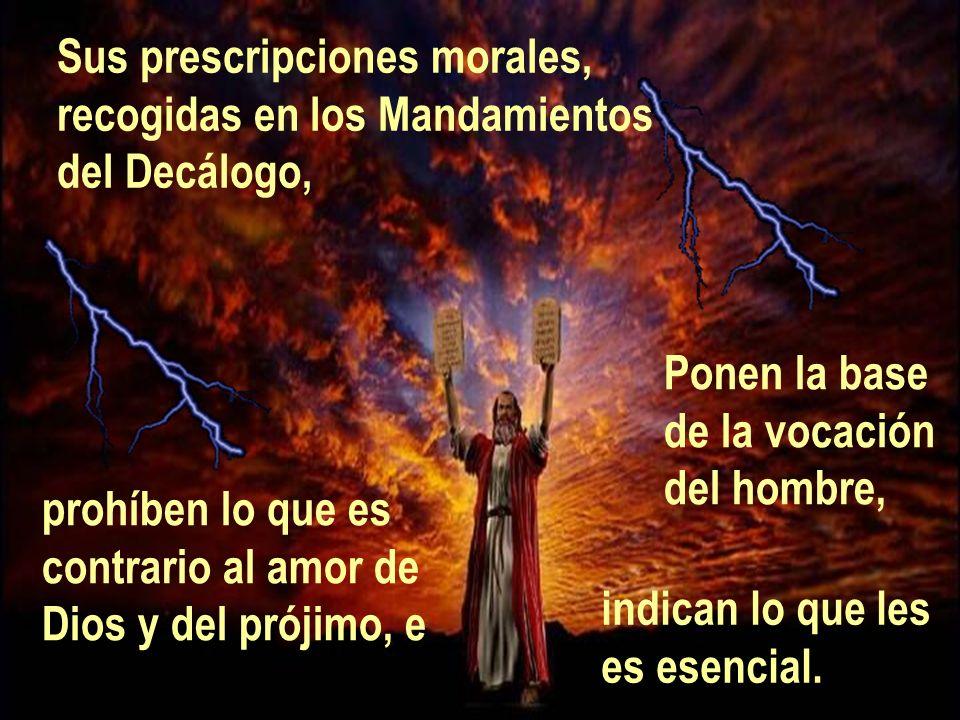 Sus prescripciones morales, recogidas en los Mandamientos del Decálogo, Ponen la base de la vocación del hombre, prohíben lo que es contrario al amor