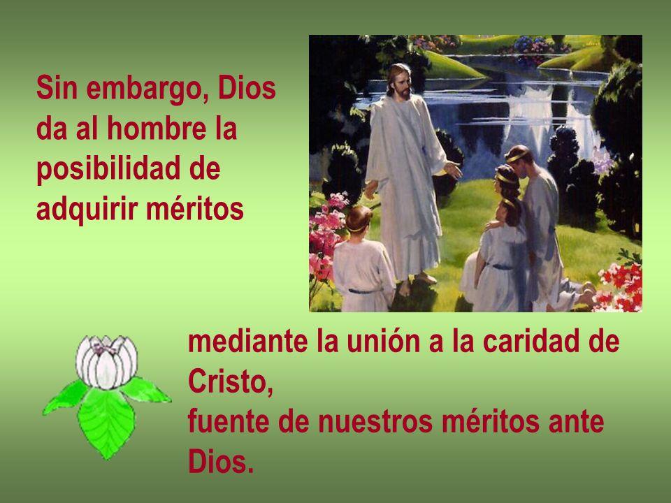 Sin embargo, Dios da al hombre la posibilidad de adquirir méritos mediante la unión a la caridad de Cristo, fuente de nuestros méritos ante Dios.