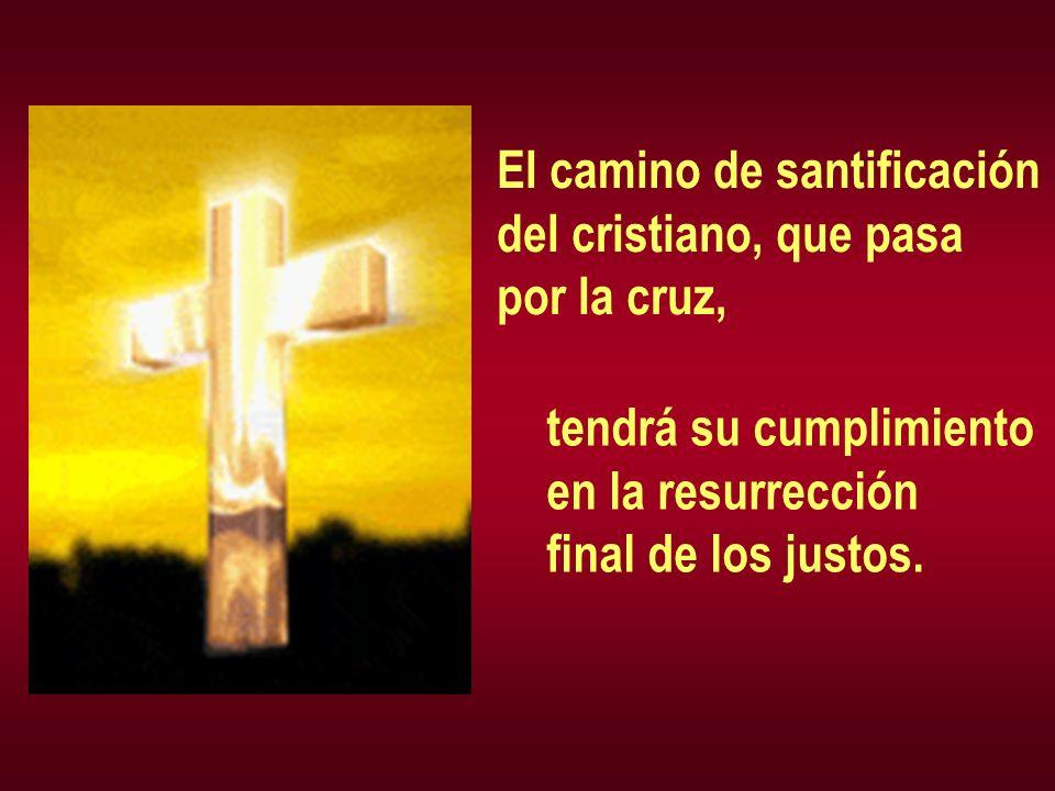El camino de santificación del cristiano, que pasa por la cruz, tendrá su cumplimiento en la resurrección final de los justos.