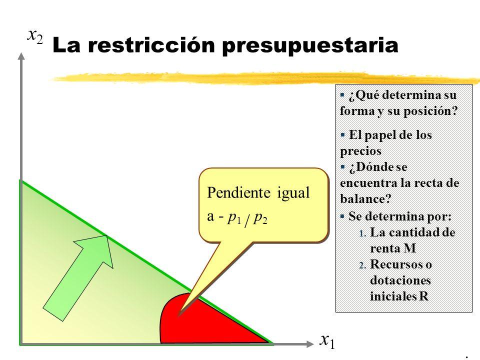 x1x1 x2x2 La restricción presupuestaria ¿Qué determina su forma y su posición.