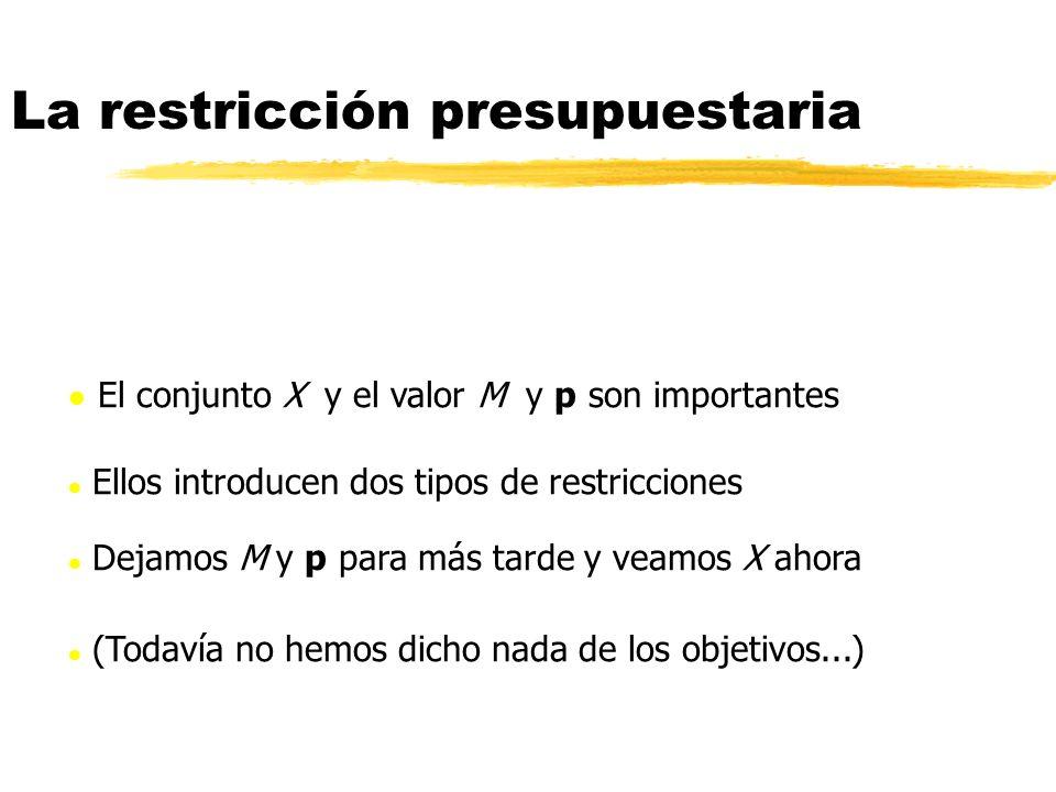 El conjunto X y el valor M y p son importantes l Ellos introducen dos tipos de restricciones l Dejamos M y p para más tarde y veamos X ahora (Todavía